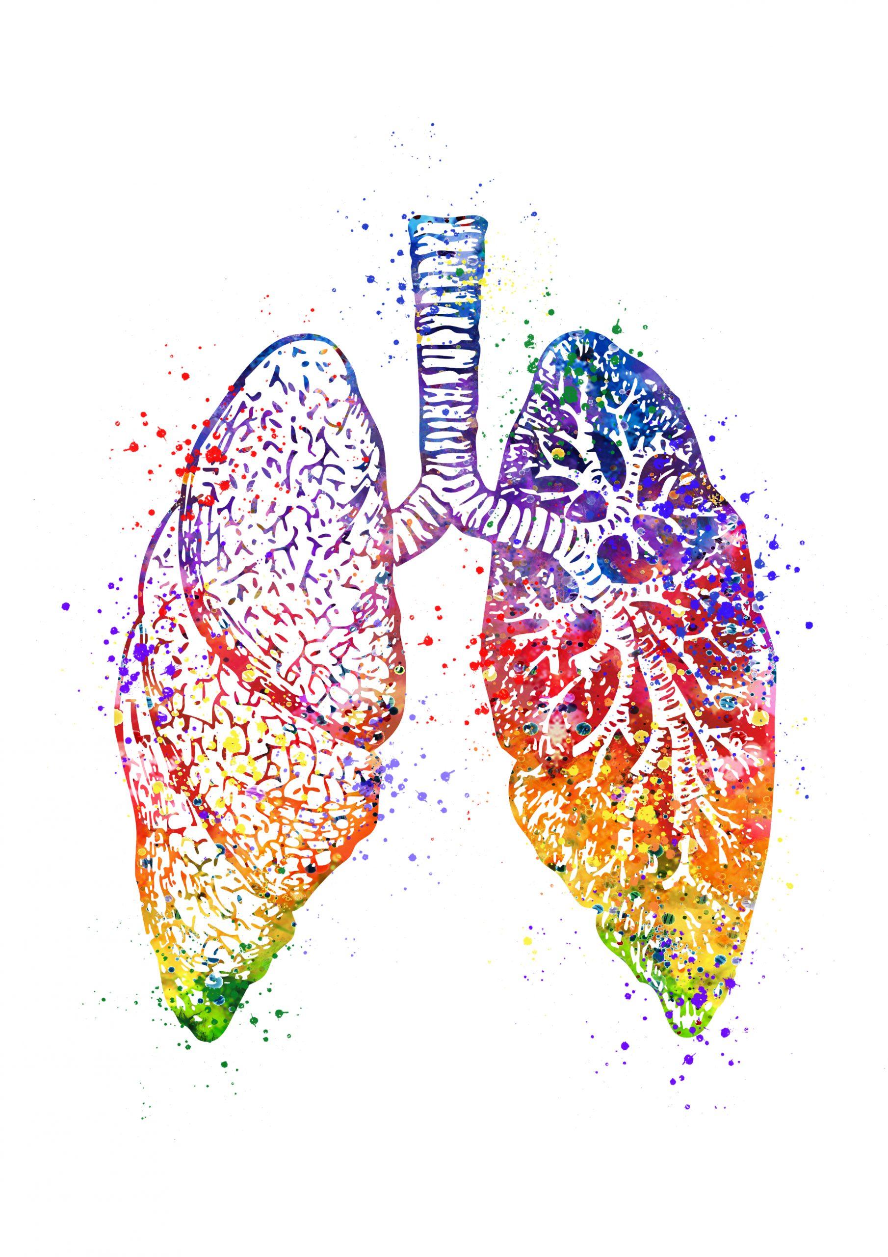 Scientific benefits of Yogic Breathwork (Pranayama)